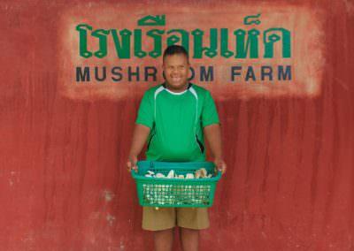 ws pic 14 mushroom